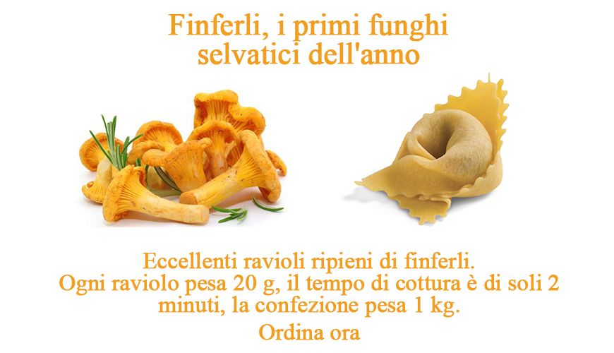 555016-panzo-finferli-ITA