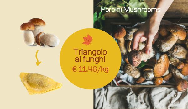Agnolotto_e_triangolo_1